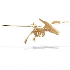 Dinosaur Balsa Kit Small - Pteranodon