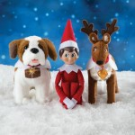 Elf on the Shelf - St Bernard