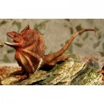 Frilled Neck Lizard Figurine