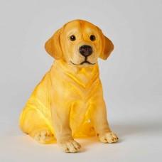 Nightlight Sculptured Labrador Dog - Jiggle & Giggle