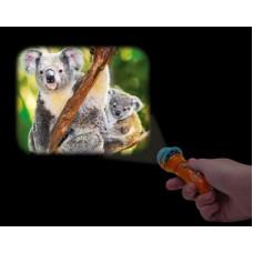 Torch Projector - Australia