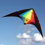 Kite Dual Control - Black Widow - Windspeed