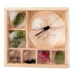 Great Outdoors Bug Box