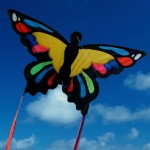 Kite - Monarch Butterfly - Windspeed