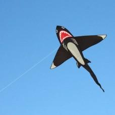 Kite - Shark - Windspeed