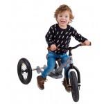 Try Bike - 2 in 1 Metal Balance Bike and Trike