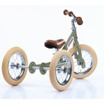 Try Bike - 2 in 1 Metal Balance Bike and Trike - GREEN