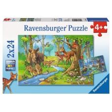 24 pc Ravensburger Puzzle - Cute Forest Animals 2x24pc *