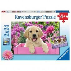 24 pc Ravensburger Puzzle - Me & My Pals 2x24pc