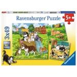 49 pc Ravensburger Puzzle - Cats & Dogs 3x49 pc