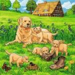 49 pc Ravensburger - Cats & Dogs Puzzle 3x49 pc