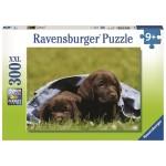 300 pc Ravensburger Puzzle - Larador Pups - XXL Pieces