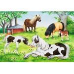 24 pc Ravensburger Puzzle - World of Horses 2x24 pc