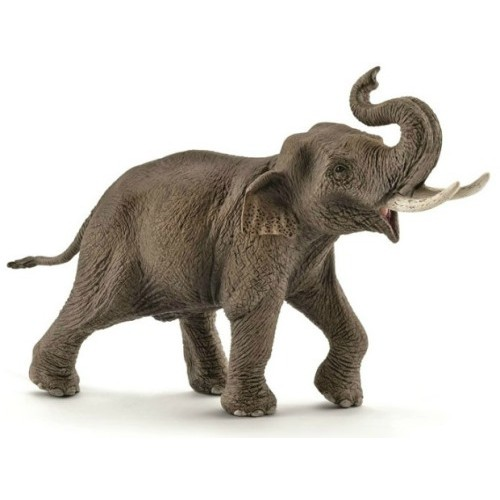 African Elephant Toys For Boys : Asian elephant bull male schleich from who what why