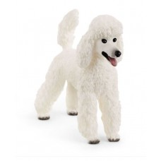 Dog - Poodle - Schleich 13917 NEW in 2021