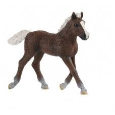 Horse - Black Forest Foal - Schleich 13897 - NEW for 2020  - AVAILABLE JANUARY 2020