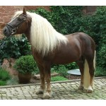 Horse - Black Forest Mare - Schleich Farm 13898 - NEW for 2020