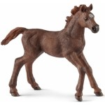 Horse - English Thoroughbred Foal - Schleich 13857