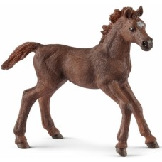 Horse - English Thoroughbred Foal - Schleich 13857   NEW in 2018