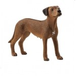 Dog - Rhodesian Ridgeback - Schleich 13895 - NEW for 2020 AVAILABLE JANUARY 2020