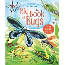 Big Book of Bugs - Usborne
