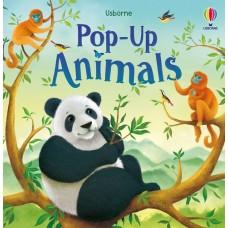 Pop Up Animals - Usborne